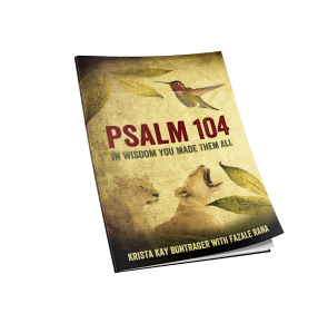 RTB_Psalm104_3D_Flat