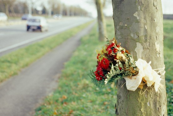 Flowers tied to tree, road in background
